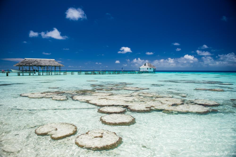 vacanza mare in Polinesia