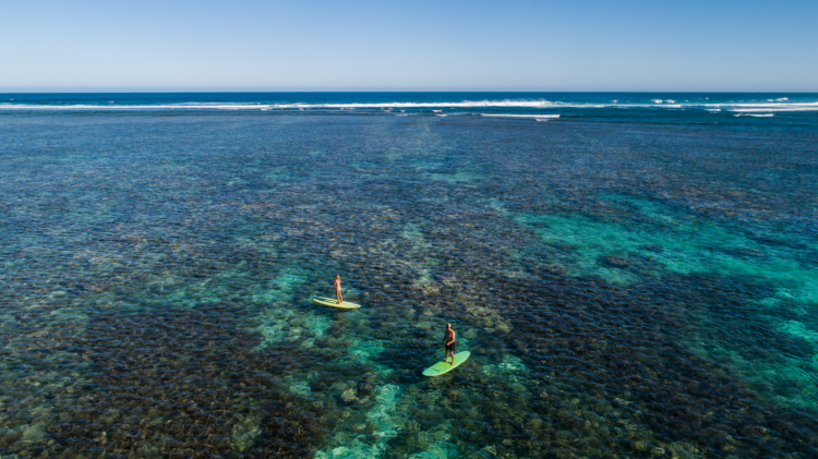 SS-Experiences-Ningaloo Reef-Stand Up Paddle Boards