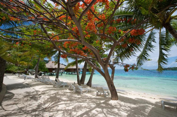 Soggiorno in Polinesia Francese
